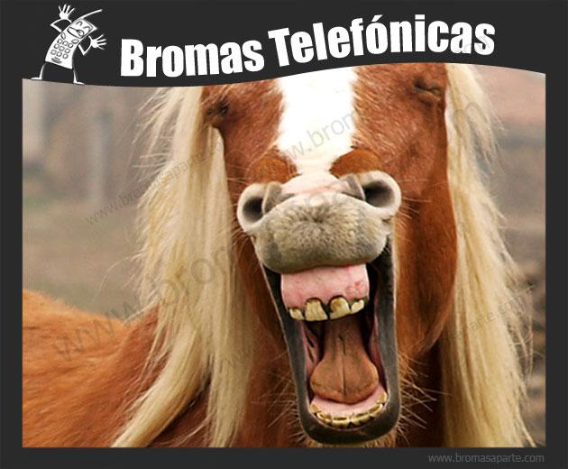 BromasAparte.com - Broma Telefónica caballo