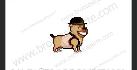 BromasAparte.com - Mascota perro Faty