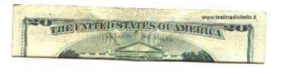 dolar20primerpaso
