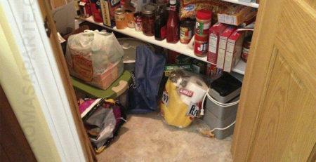 juegos-encuentra-al-gato
