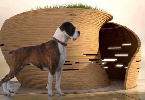 fotos-casas-para-perros-originales (13)
