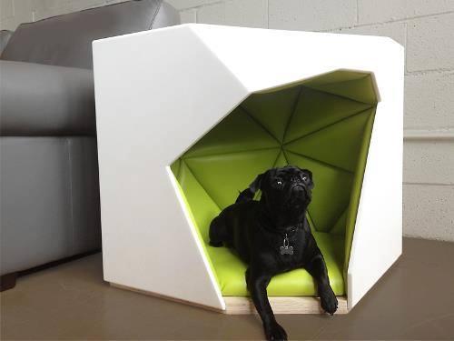fotos-casas-para-perros-originales (9)